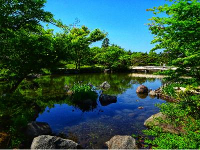 ジョイフル本田瑞穂店へ行くなら昭和記念公園もぜひ!!